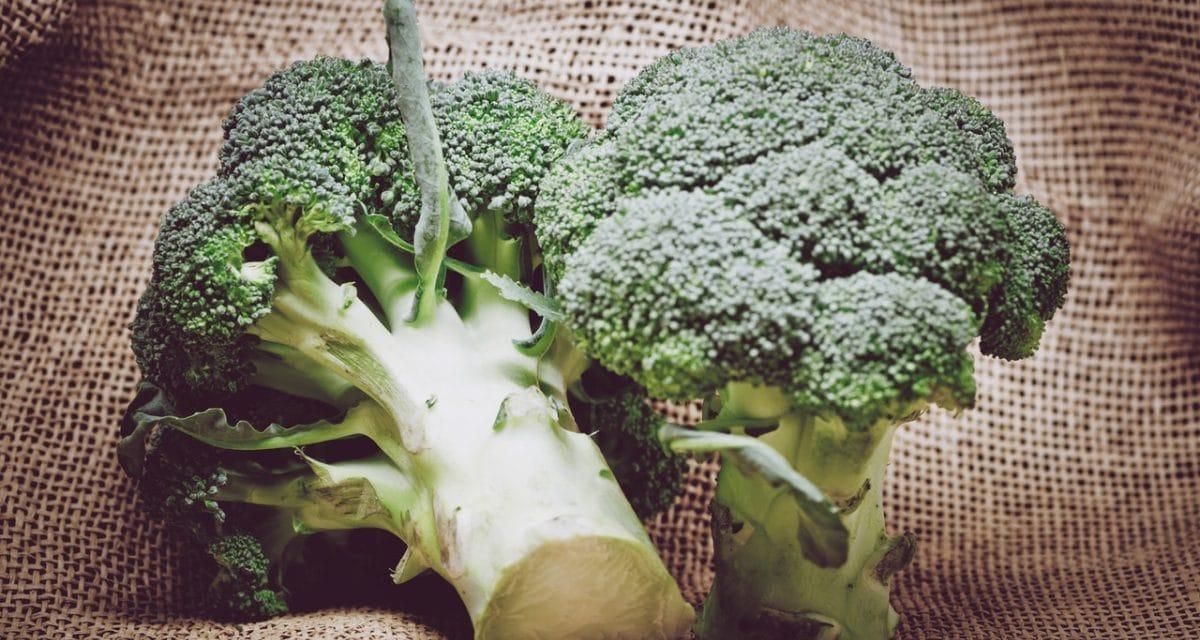 Broccoli – supergrönsaken för hälsa och muskler