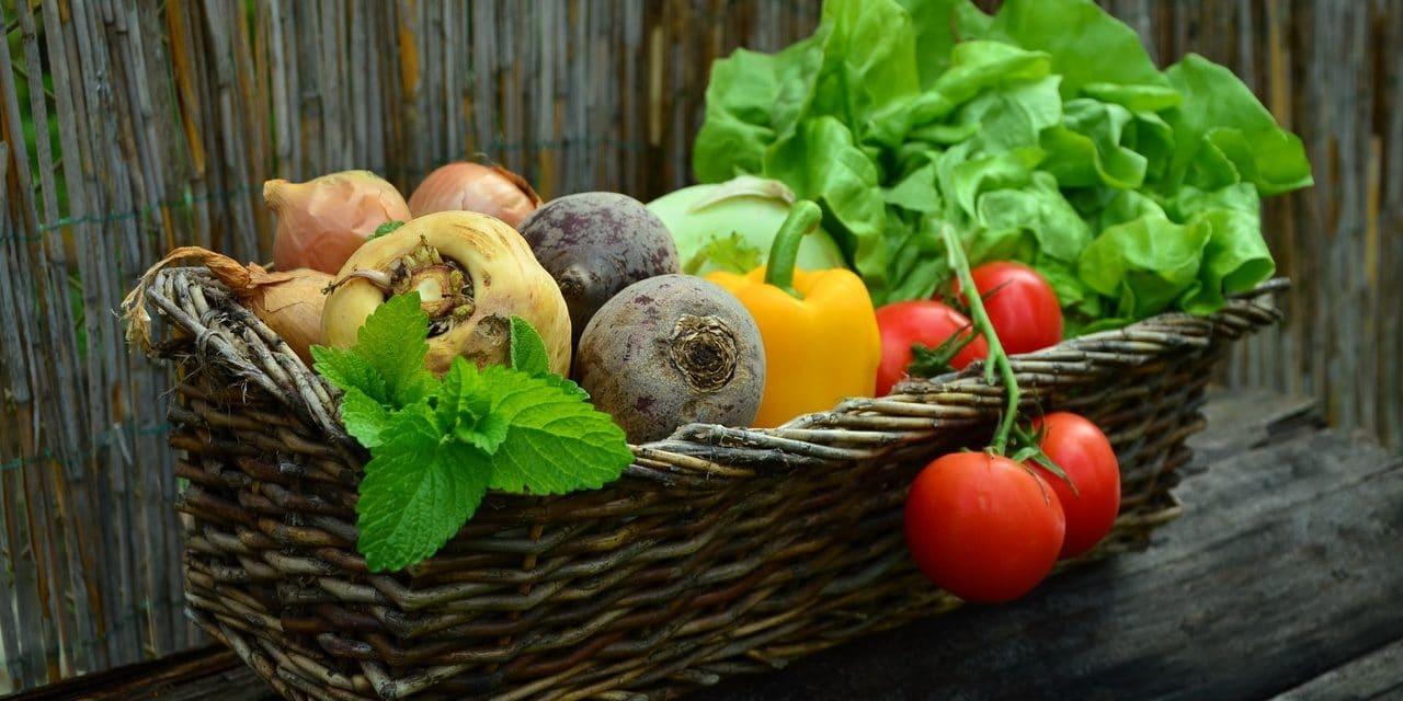 Grön mat som ger resultat